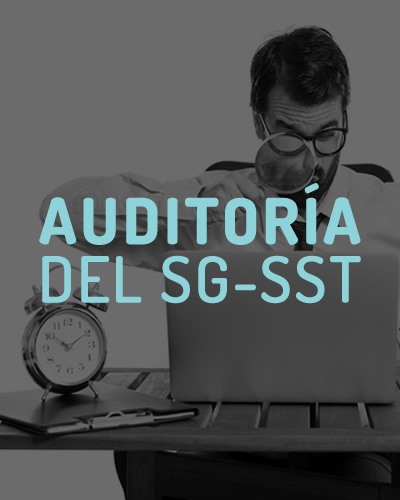 auditoria del sistema de gestion